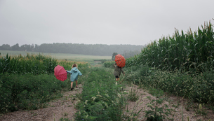 Rear view of siblings carrying umbrellas while walking on field against sky during rainy seasonの写真素材 [FYI03745933]