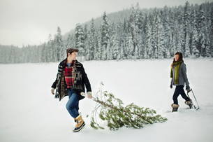 Boyfriend looking at girlfriend while pulling pine tree on snow covered field in forestの写真素材 [FYI03748251]