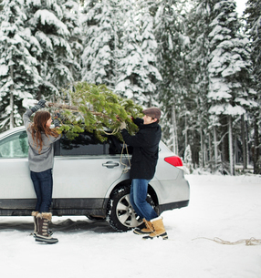 Couple putting pine tree on car roof while standing in snow covered forestの写真素材 [FYI03748259]