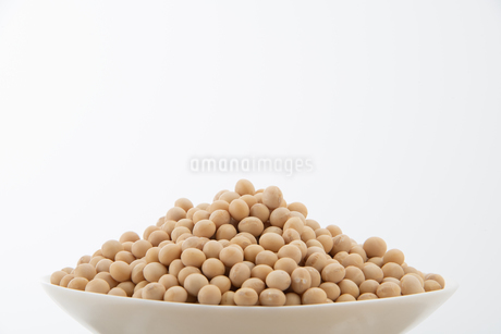 Soy bean on white backgroundの写真素材 [FYI03750826]