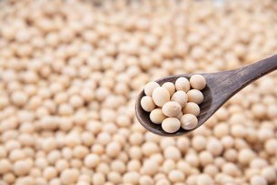 Soy bean as food backgroundの写真素材 [FYI03751314]