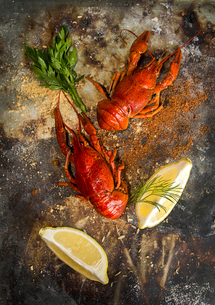 Overhead view of boiled crayfish on rusty tableの写真素材 [FYI03751690]