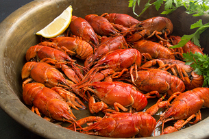Close-up of boiled crayfish in cooking utensilの写真素材 [FYI03751692]
