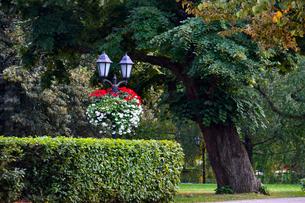 ラトビアの首都リガにある公園にある街灯柱と花飾りの写真素材 [FYI03751788]