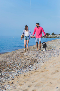 Couple with dog holding hands while walking at beach against blue sky during sunny dayの写真素材 [FYI03751930]