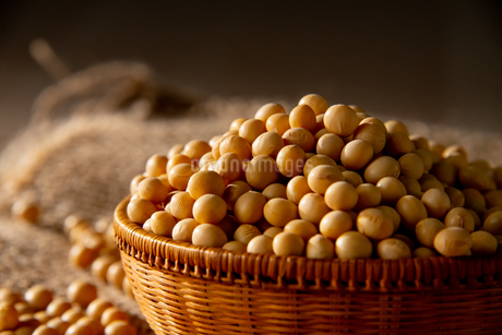Soy bean as food backgroundの写真素材 [FYI03752004]