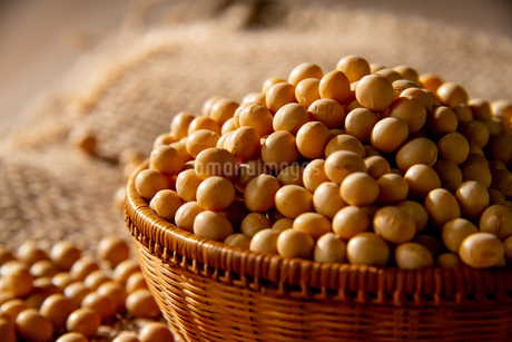 Soy bean as food backgroundの写真素材 [FYI03752130]