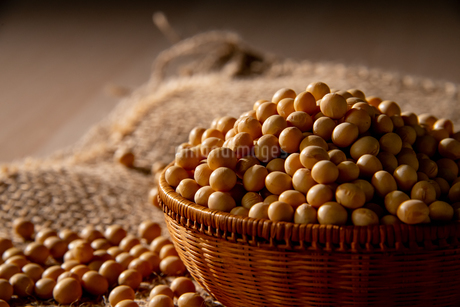 Soy bean as food backgroundの写真素材 [FYI03752298]