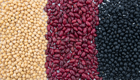 Various kinds of beansの写真素材 [FYI03752410]