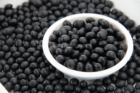 Black bean in white bowlの写真素材 [FYI03752669]