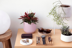 High angle view of personal accessories with plants arranged on wooden table against wall at homeの写真素材 [FYI03753144]