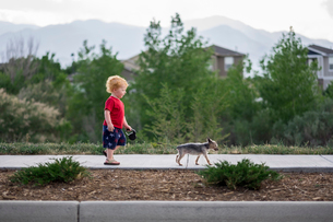 Side view of cute baby boy walking with puppy on footpath in parkの写真素材 [FYI03754575]