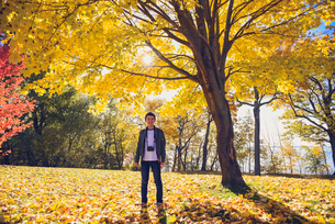 Teenage boy with camera standing under tree with fall foilage in parkの写真素材 [FYI03756523]