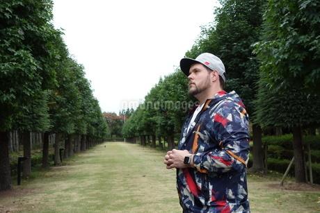 並木道に立つ外国人男性の写真素材 [FYI03757445]