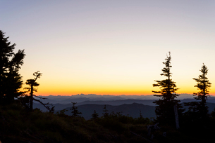 Silhouette Trees with Mountain Views in Distanceの写真素材 [FYI03757657]