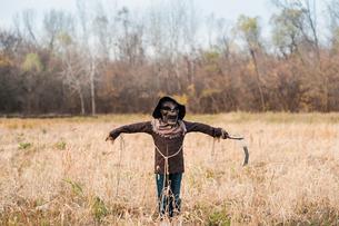 Boy poses in scarecrow halloween costume in fieldの写真素材 [FYI03757769]
