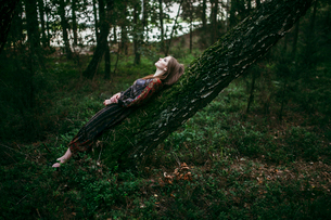woman lying on a tree looking at the skyの写真素材 [FYI03757832]