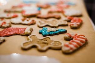 Christmas Cookies decorated with icingの写真素材 [FYI03757880]