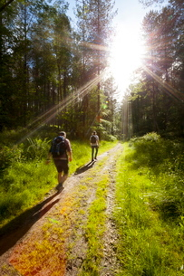 Young men hiking on an outdoor adventure trail, The Chilterns, Buckinghamshireの写真素材 [FYI03759589]