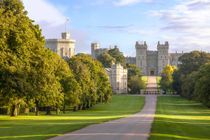 The Long Walk with Windsor Castle in the background, Windsor, Berkshireの写真素材 [FYI03759604]
