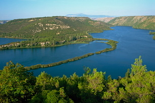 Lake and wooded hills in Krka National Parkの写真素材 [FYI03759635]