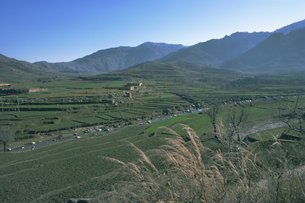 Agricultural landscape near Murghazar, Swat, North West Frontier Province, Pakistanの写真素材 [FYI03759743]