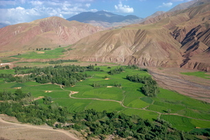 Rice fields and terracing in a valley in the Shahrak region, Iran, Middle Eastの写真素材 [FYI03759855]