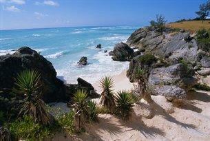 Beach on south coast, Bermudaの写真素材 [FYI03759857]