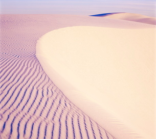Dunes, White Sands National Park, New Mexicoの写真素材 [FYI03759917]