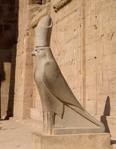 The Statue of Horus (the falcon god), at the Temple of Horus, Edfuの写真素材 [FYI03760178]