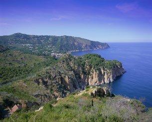 Typical Costa Brava scenery on the Cap de Creus, Costa Brava, Catalunya (Catalonia) (Cataluna)の写真素材 [FYI03760232]