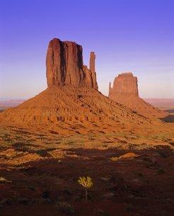 The Mittens, Monument Valley Navajo Tribal Park, Arizona, USA'の写真素材 [FYI03760240]