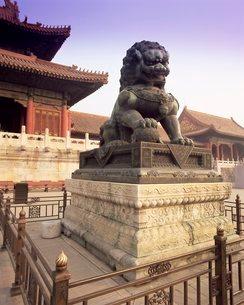 Lion statue, Forbidden City, Beijingの写真素材 [FYI03760286]