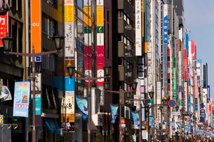 View along Chuo-dori, the most fashionable shopping street in Tokyo, Ginza, Tokyo, Honshu, Japanの写真素材 [FYI03760453]