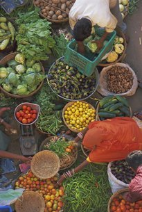 Overhead view of the fruit and vegetable market, Pushkar, Rajasthan Stateの写真素材 [FYI03760687]