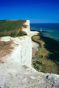 Lighthouse and chalk cliffs of Beachy Head near Eastbourne from the South Downs Way, East Sussexの写真素材 [FYI03760735]