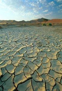 Sunbaked mud pan/cracked earth, near Sossusvlei, Namib Naukluft Park, Namibiaの写真素材 [FYI03761081]
