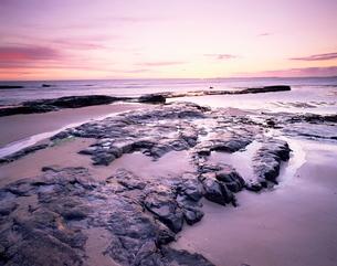 Sunrise over North Sea from Bamburgh beach, Bamburgh, Northumberlandの写真素材 [FYI03761198]