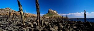 Lindisfarne Castle, Holy Island, Northumberlandの写真素材 [FYI03761230]