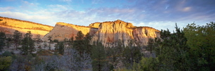 First light on the hills, Zion National Parkの写真素材 [FYI03761265]
