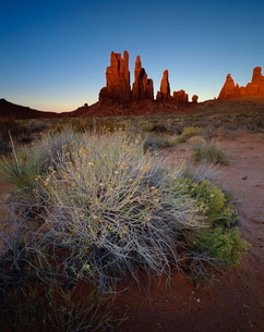 Sandstone formations in evening light with scrub in foreground, Monument Valley Tribal Park, Arizonaの写真素材 [FYI03761274]