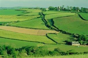 Fields and farms near Fowey, Cornwallの写真素材 [FYI03761280]