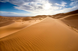 Rolling orange sand dunes and sand ripples in the Erg Chebbi sand sea near Merzougaの写真素材 [FYI03761371]