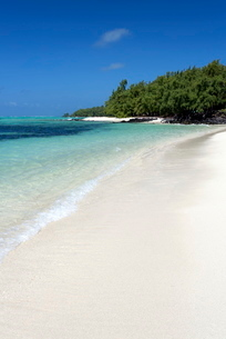 Idyllic beach scene with blue sky, aquamarine sea and soft sand, Ile Aux Cerfs, Mauritiusn Oceanの写真素材 [FYI03761393]