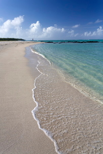 Idyllic beach scene with blue sky, aquamarine sea and soft sand, Ile Aux Cerfs, Mauritiusn Oceanの写真素材 [FYI03761396]