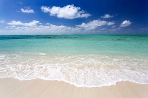 Idyllic beach scene with blue sky, aquamarine sea and soft sand, Ile Aux Cerfs, Mauritiusn Oceanの写真素材 [FYI03761399]