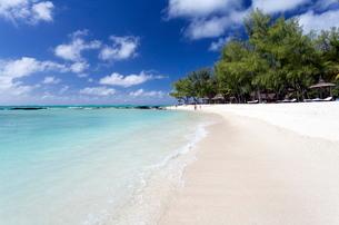 Idyllic beach scene with blue sky, aquamarine sea and soft sand, Ile Aux Cerfs, Mauritiusn Oceanの写真素材 [FYI03761401]