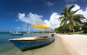 Beach scene with palm trees, blue sky and a boat used to ferry tourists to the idyllic island of Ileの写真素材 [FYI03761405]
