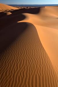 Orange sand dunes and sand ripples, Erg Chebbi sand sea, Sahara Desert near Merzougaの写真素材 [FYI03761434]