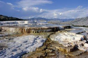Minerva Terrace, Mammoth Hot Springs, Yellowstone National Park, Wyomingの写真素材 [FYI03761532]